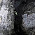 蓮花洞中往樹下出口方向看