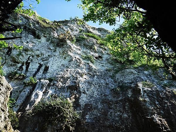 仰望觀海崖頂部白色岩壁
