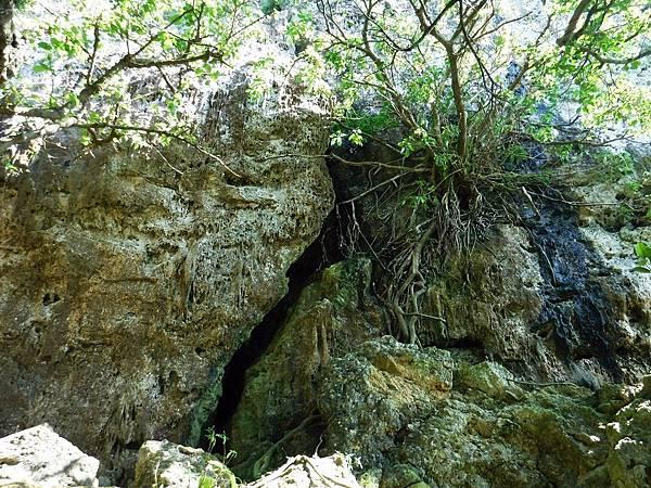 崖壁下方的岩壁裂隙