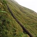 「長仁二號煙管」順山勢攀坡而上
