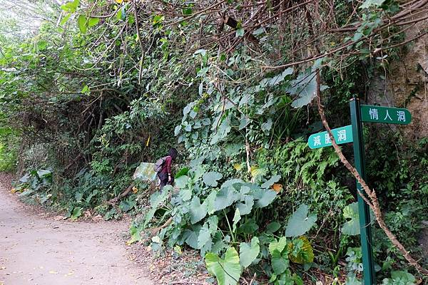 前往大崗山情人洞的岔路口