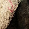 紅色箭頭標記向下鑽