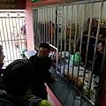 Timpohon Gate販賣部