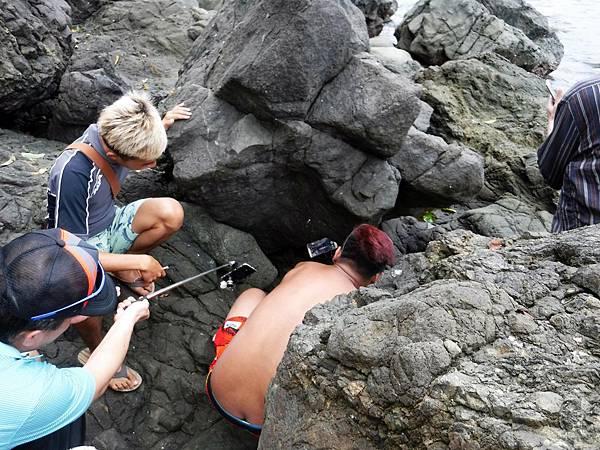 石縫中發現海蛇蹤影