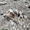 露營火堆痕跡