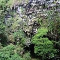 Jomblang Cave垂直沉穴風景