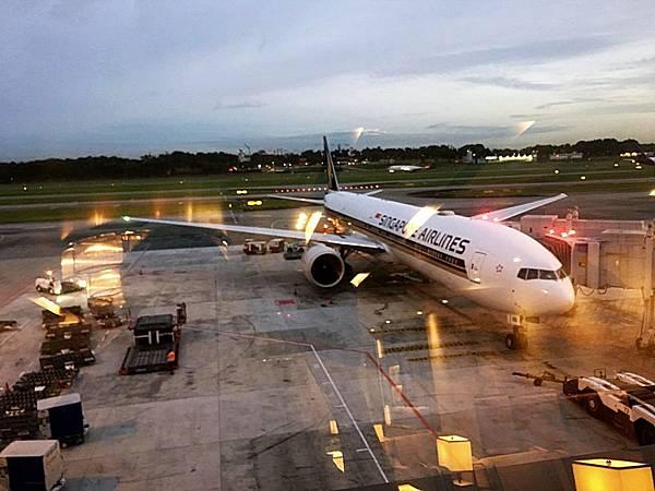 新航SQ7@樟宜機場