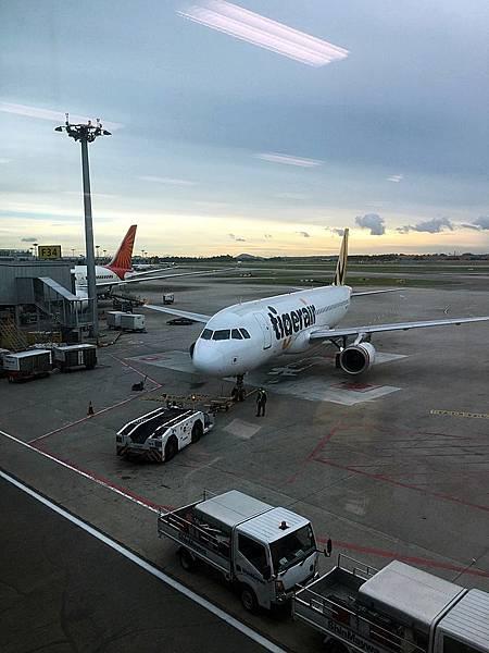 欣豐虎航@樟宜機場
