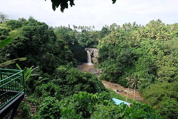 俯瞰Tegenungan瀑布綠色山谷