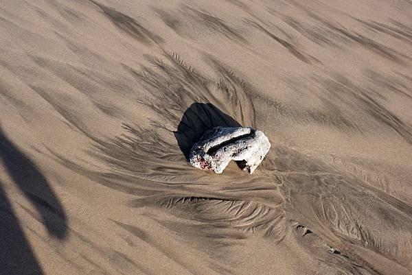 沙灘上的神秘花紋