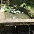 梯田灌溉水源意象