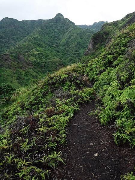 山路走上崖壁