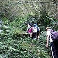 濟玄堂登山口出發後一路陡上