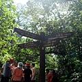 「茄冬樹」路標指示牌
