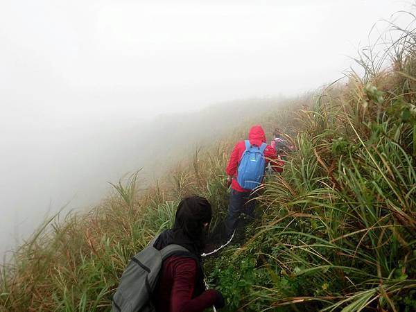 稜線穿行霧茫草茫之中