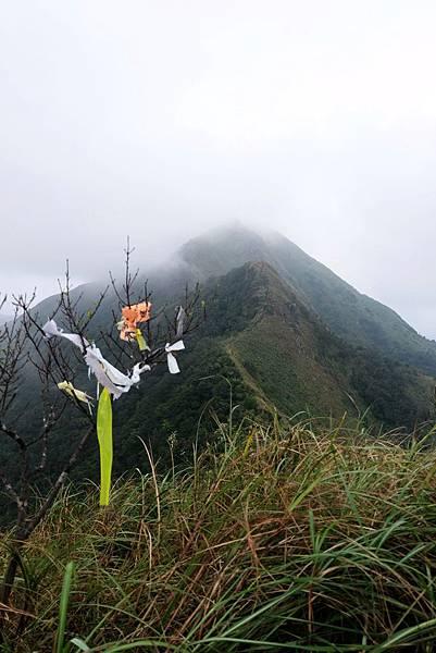 雷霆峰頂枯樹登山綁條
