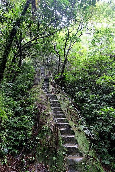 往孝子山登山步道