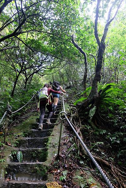 石階步道一路陡直而上