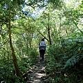 密林中的第一段陡上