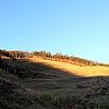 山莊後面的山坡