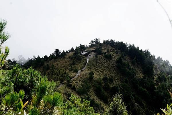 俯瞰哭坡觀景台