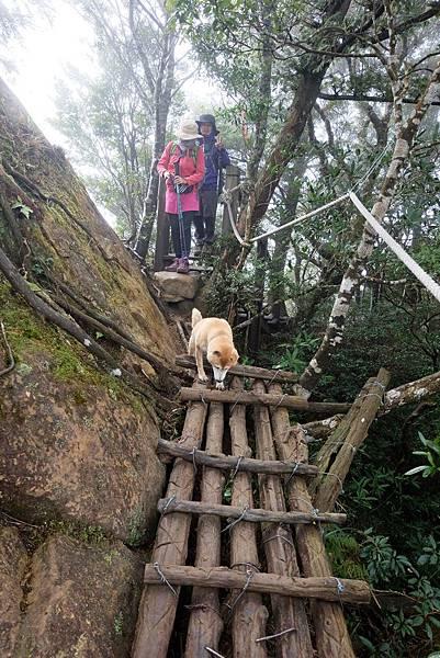 主稜線崖脊步道一景