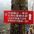 「左去右回」路線標示方向