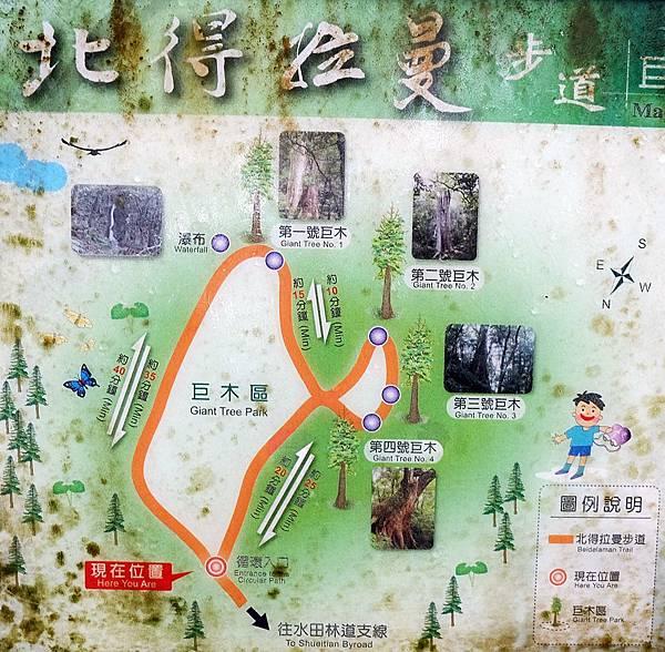 巨木區環狀步道Map