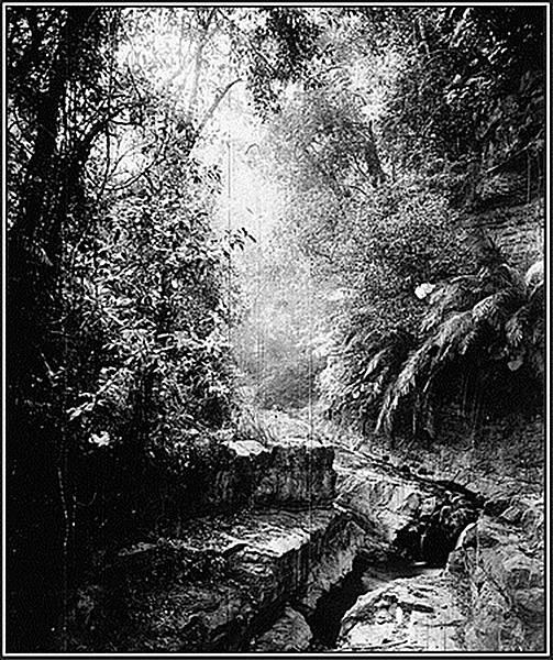 《拍攝於六龜里附近的山間小徑》-1871年John Thomson攝