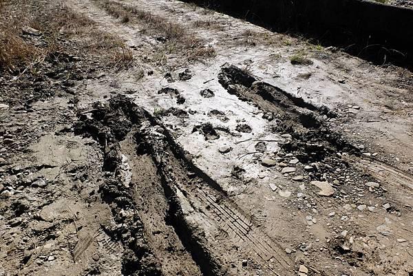 車輪深陷爛泥痕跡