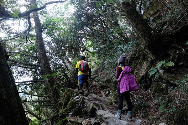 陡上爬坡路段