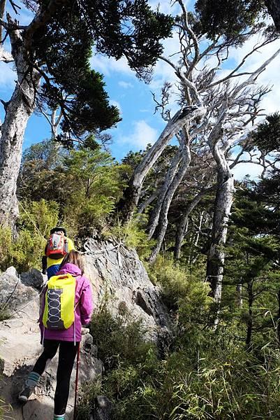 稜線攀岩路段