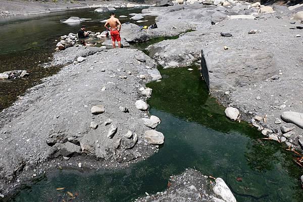 泰崗野溪溫泉頭池水深綠