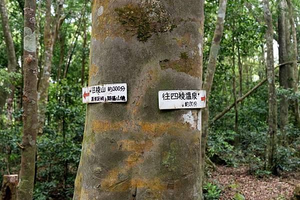 標示左往陵山、右往四陵溫泉