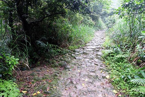過磺溪後步道轉為上行