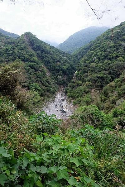 陡下遇溪谷展望