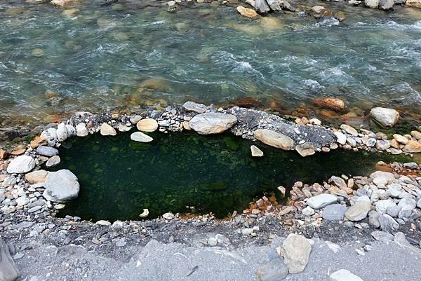 未引水導入的溫泉池變得深綠