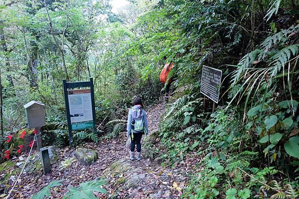羊頭山登山步道0K,H1999m
