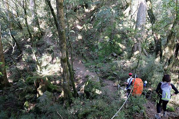 羊頭山登山步道1.6K小營地
