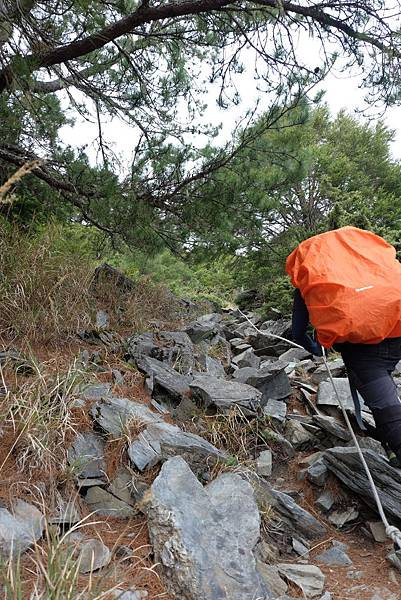 拉繩攀岩路段