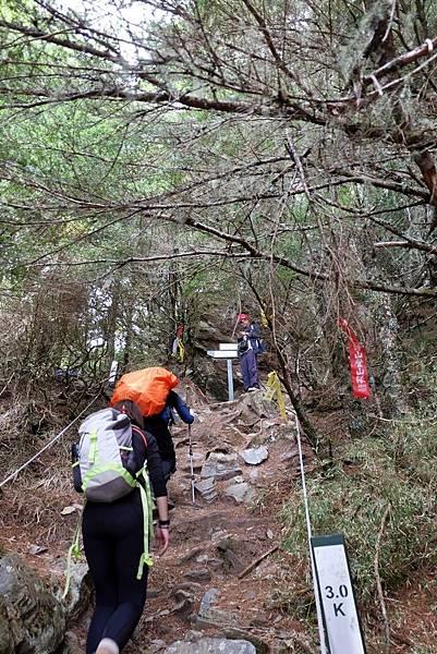 羊頭山登山步道3K抵達三叉路口