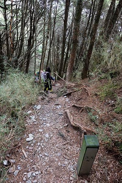 羊頭山登山步道3.5K繼續陡下