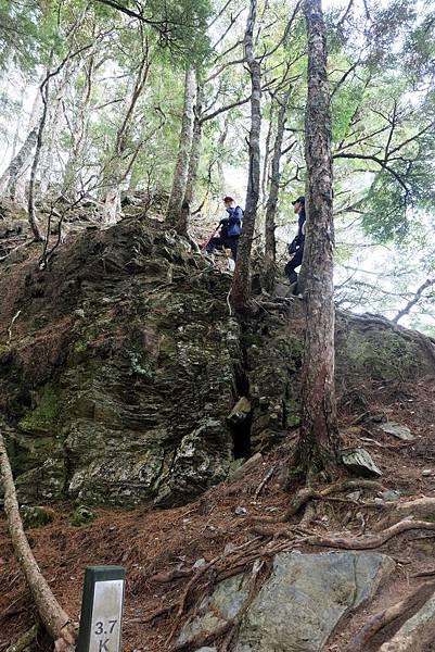 羊頭山登山步道3.7K攀岩