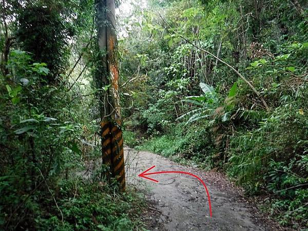 電線桿下切岔路