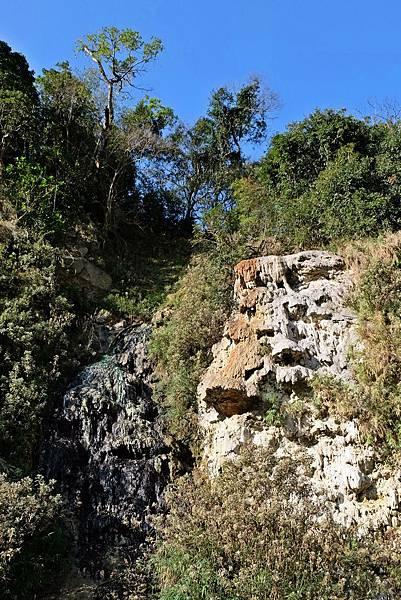 十坑野溪溫泉營地旁山壁上的溫泉露頭