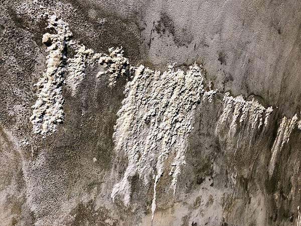 牆上「微鐘乳石」結晶