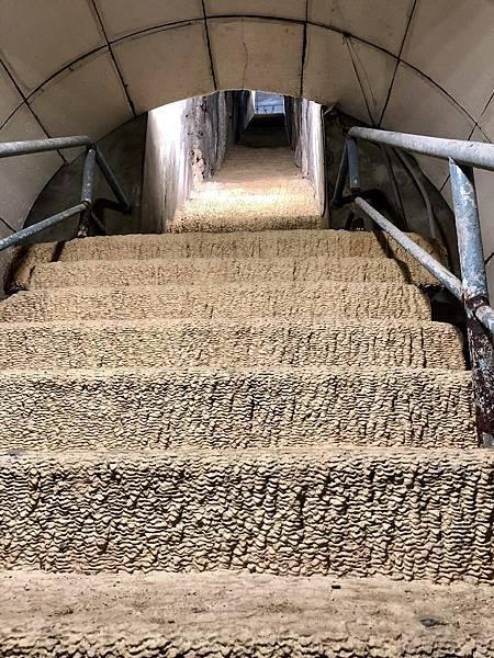 底端階梯呈魚鱗狀微鐘乳石化