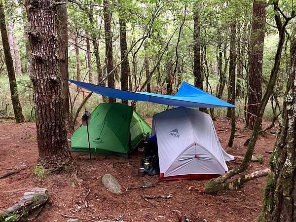 松林營地紮營