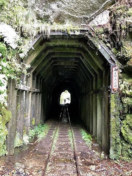 第7號隧道(43m,H2332m)