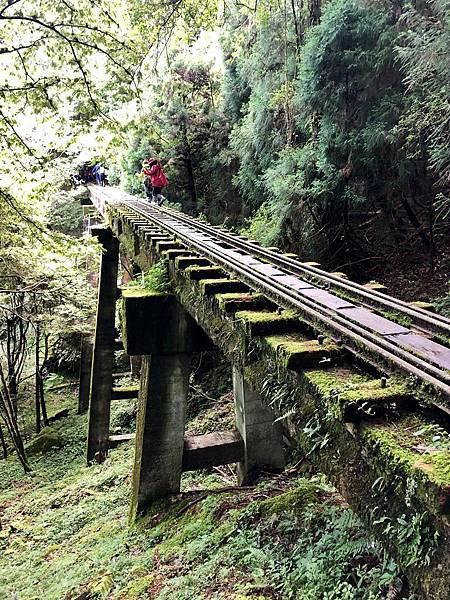 第20號橋樑(48.5m)
